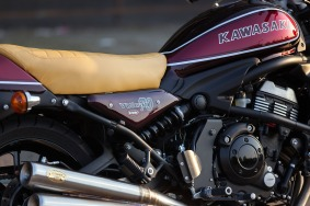 hi_MrMartini_Kawasaki_dettagli_moto-14