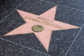hollywood-4133251